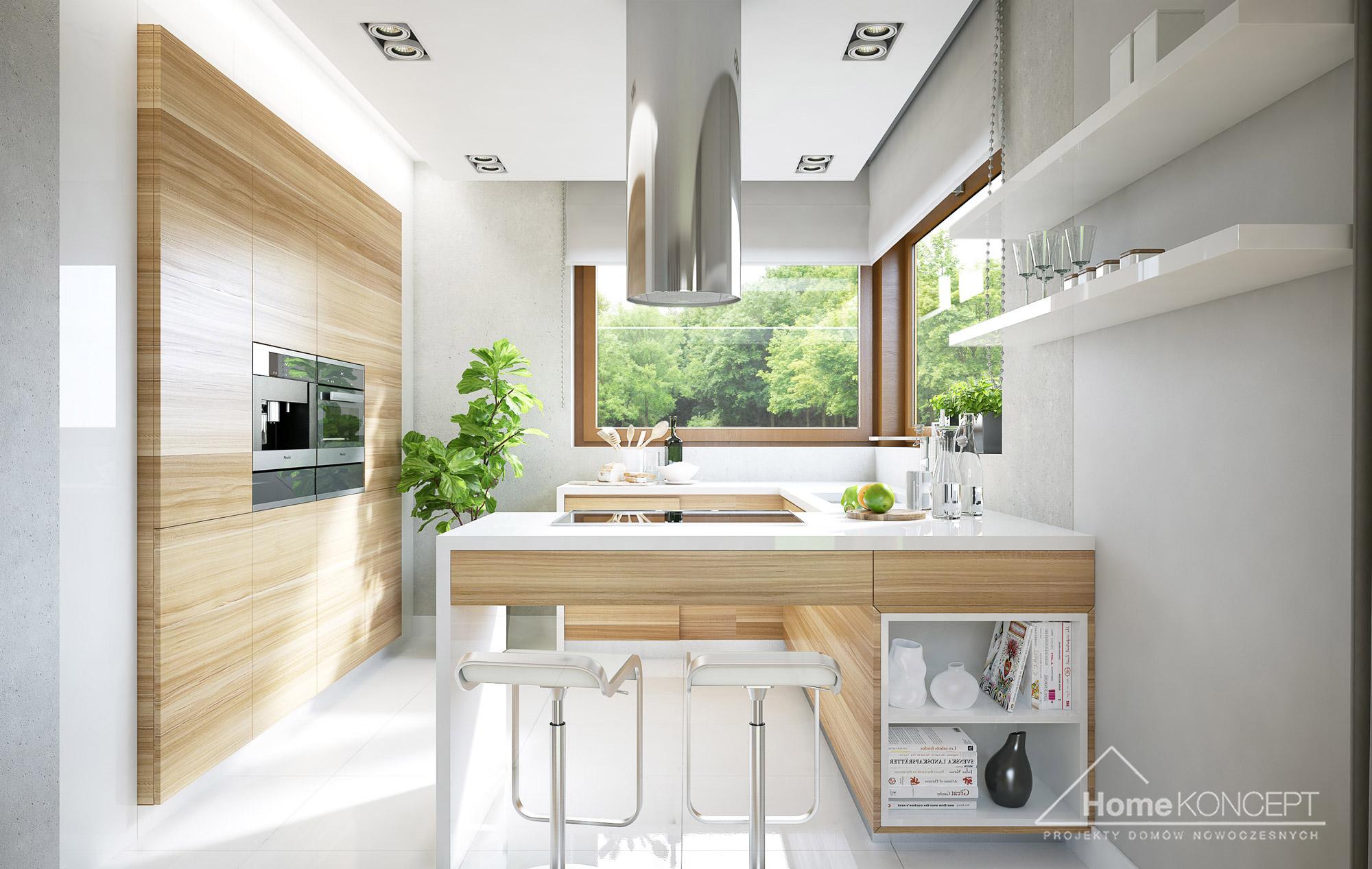Projekt Domu Homekoncept 18 Architekt Allplans Rzeszow Przemysl